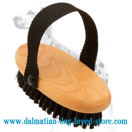 Dog bristle brush for everyday Dalmatian grooming
