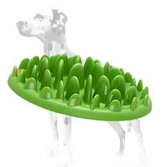 Dalmatian safe eating Grassy Dish