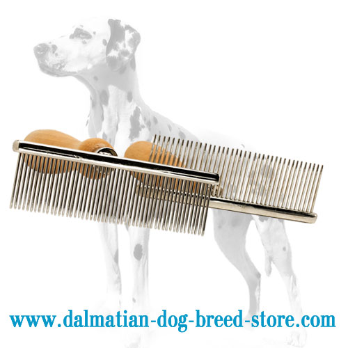 Metal dog comb for Dalmatian breed