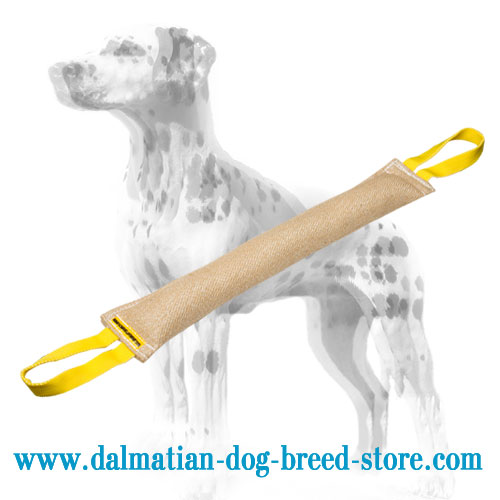 Jute Dalmatian training bite tug