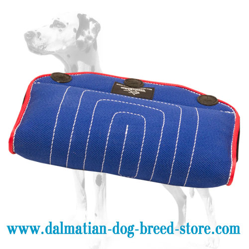Dalmatian breed training grip builder, durable bite surface