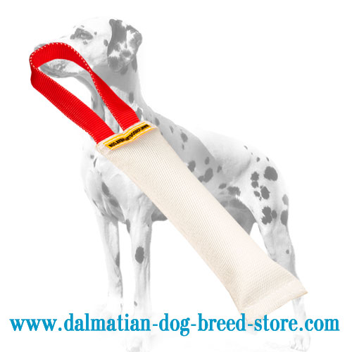 Dog bite tug for Dalmatians with nylon loop