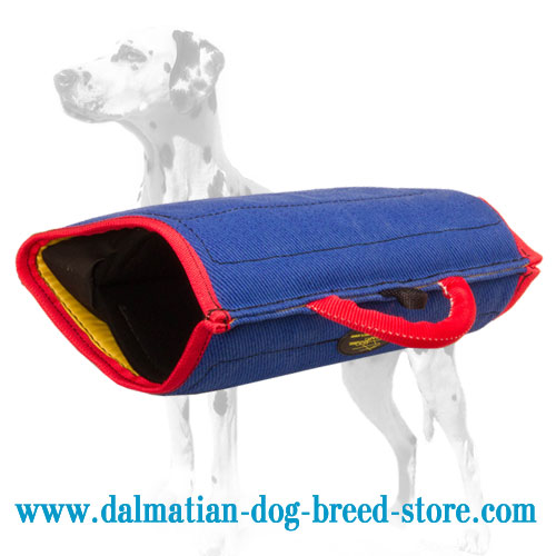 Dalmatian training bite builder with French linen cover