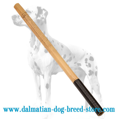 Dalmatian training bamboo stick, eco-safe