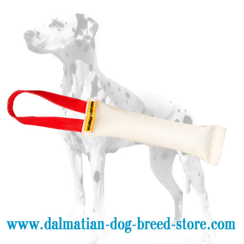 Fire hose bite tug for Dalmatian dog training