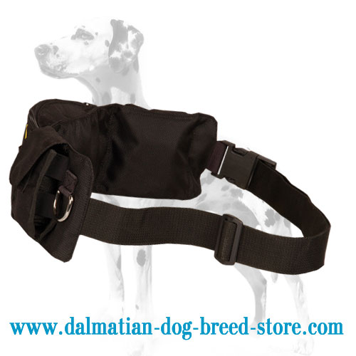 Dalmatian training pouch, easy adjustable belt