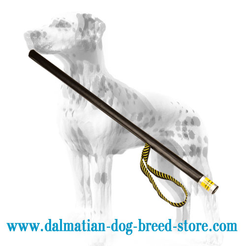Dalmatian training stick with nylon loop