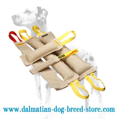 Dalmatian training set of jute tugs, super practical