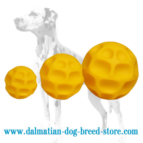 Dog chew balls for Dalmatians, 3 sizes available