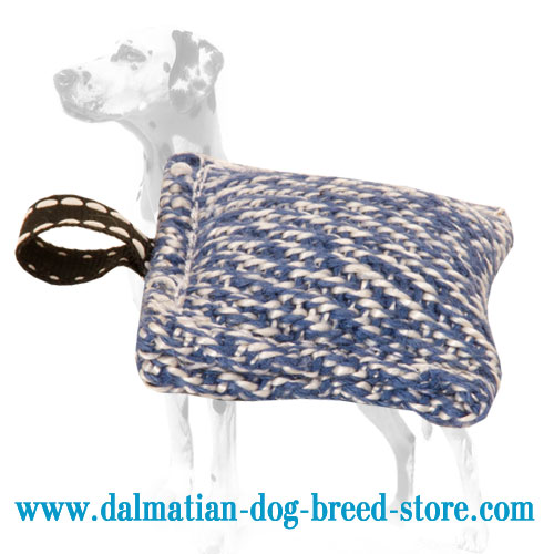 Dog bite pillow of small size for Dalmatian grip strengthening