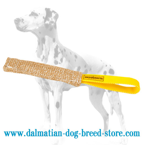Dog bite tug of jute for training Dalmatian puppies