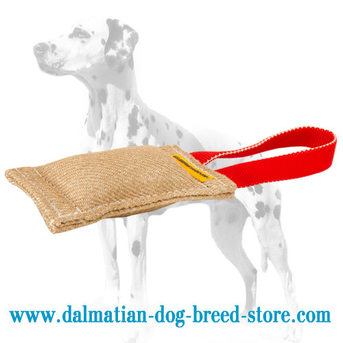 Dog bite tug for training made of jute with stuffing