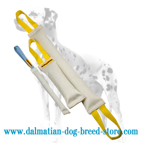 Dalmatian training tugs set, strong fire hose material