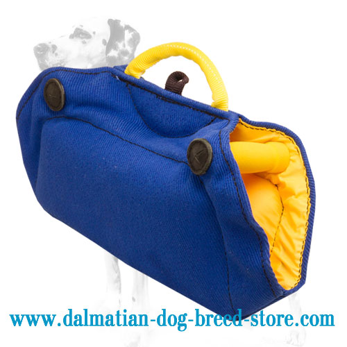 Young dog training grip builder of durable French linen