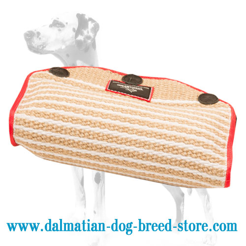 Dalmatian breed training jute bite builder, stitched for durability