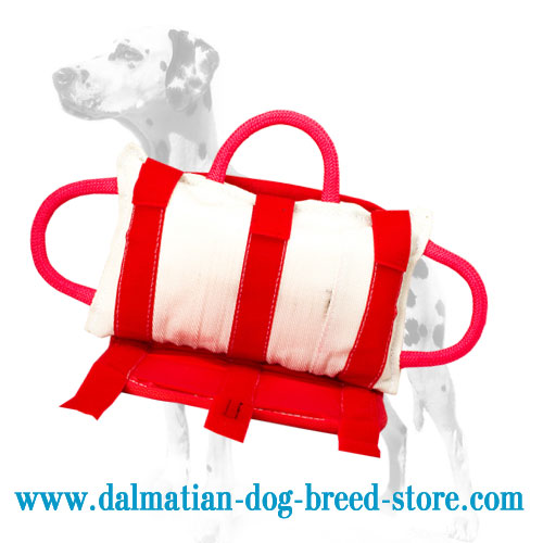 Dog training bite pad for Dalmatian training, jute cover