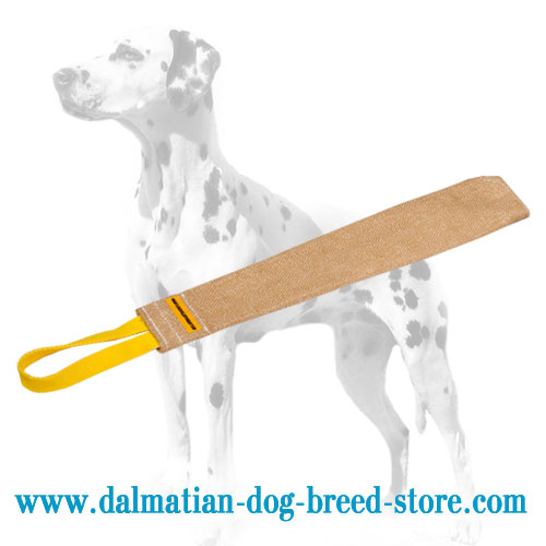 Puppy training jute rag for Dalmatians