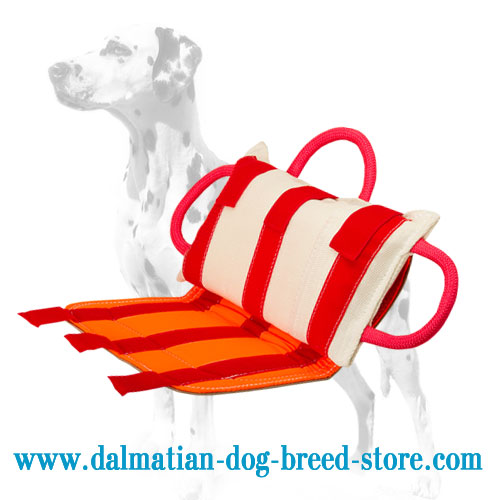 Dog bite pad for Dalmatian protection training, leather cover