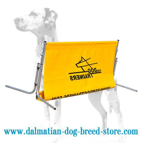 Lightweight Hurdle Jump for Dalmatian Training
