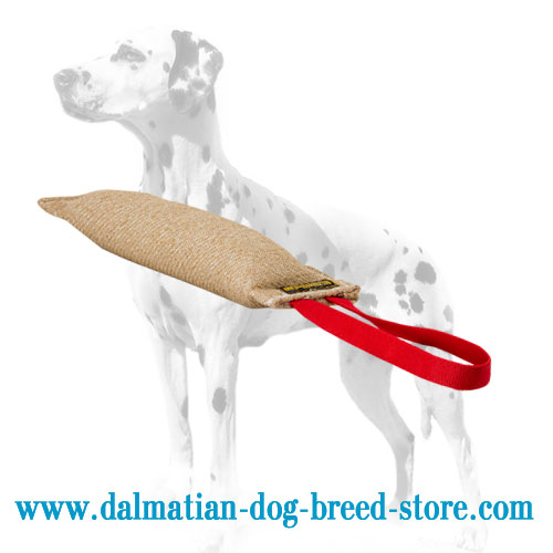 Dog bite tug for Dalmatians, pocket size
