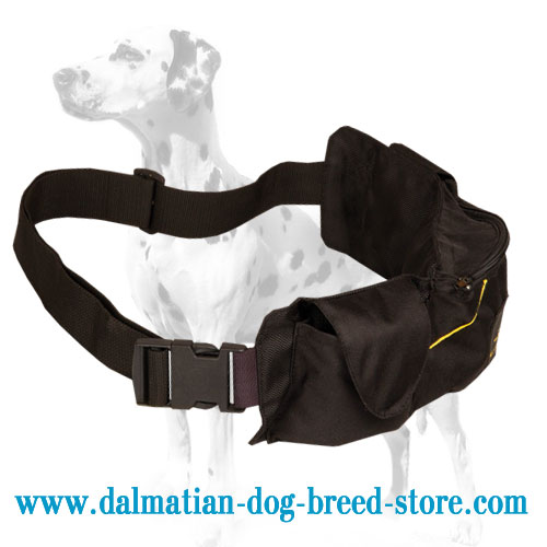 Dalmatian training pouch made of waterproof nylon