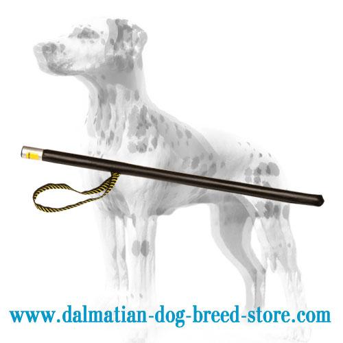 Dog training stick of strong hard plastic