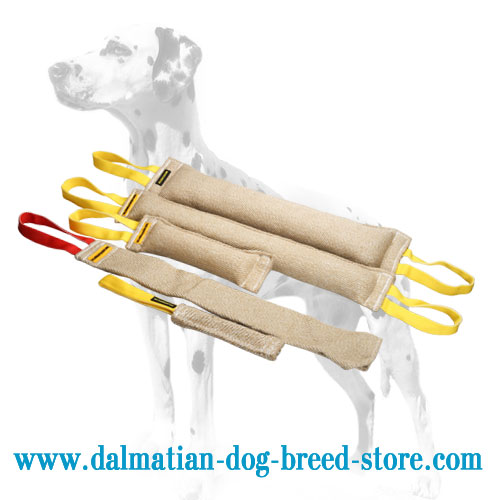 5 items for  Dalmatian bite training in one set