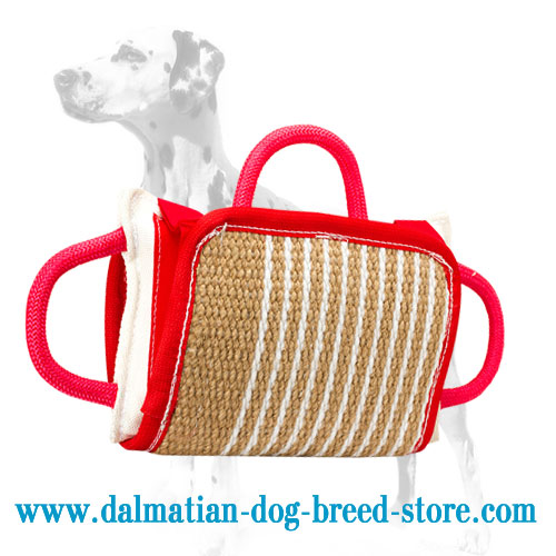 Bite pad with jute cover made of eco-safe jute for training Dalmatian puppies