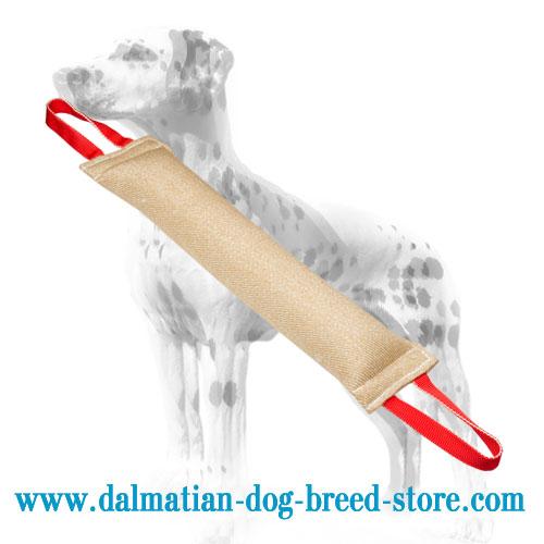 Bite tug for training Dalmatians, jute