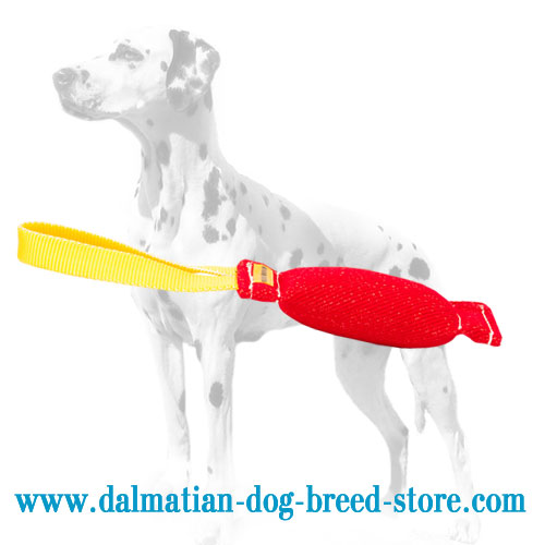 Dog bite tug for elementary Dalmmatian training