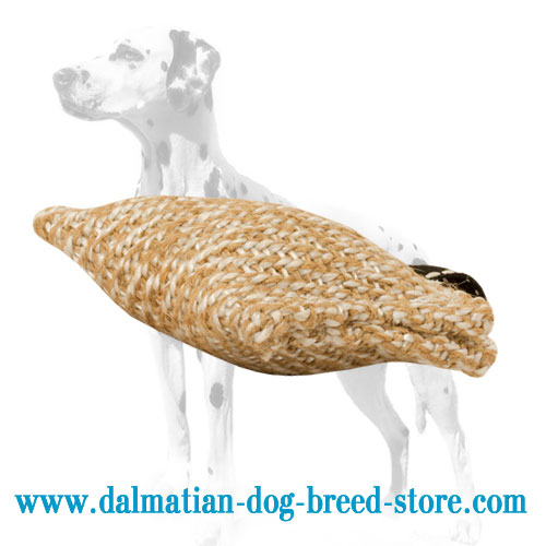 Dog bite tug for Dalmatian puppy training, jute material