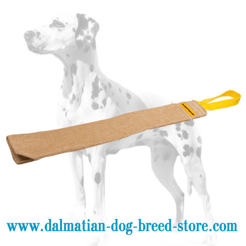 Bite rag of eco-safe jute for training Dalmatian puppies