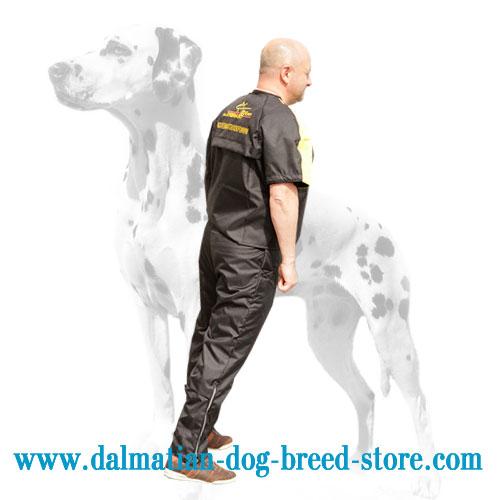 Scratch protective suit for training Dalmatian