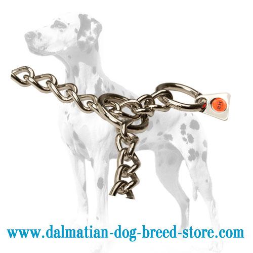 Dog choke chain collar for Dalmatians: 2 O-rings
