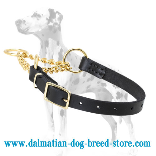 Martingale Dalmatian training choke collar