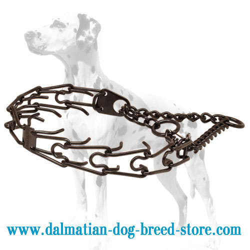 Dog prong collar for Dalmatians made in black