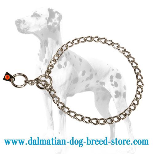 Dalmatian dog choke chain collar for obedience training