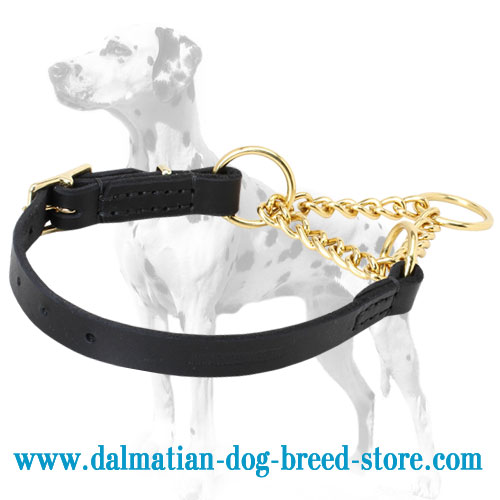 Leather/brass combo Dalmatian training choke collar