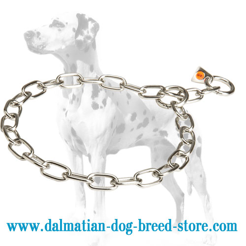 Dog choke chain fur saver for Dalmatians