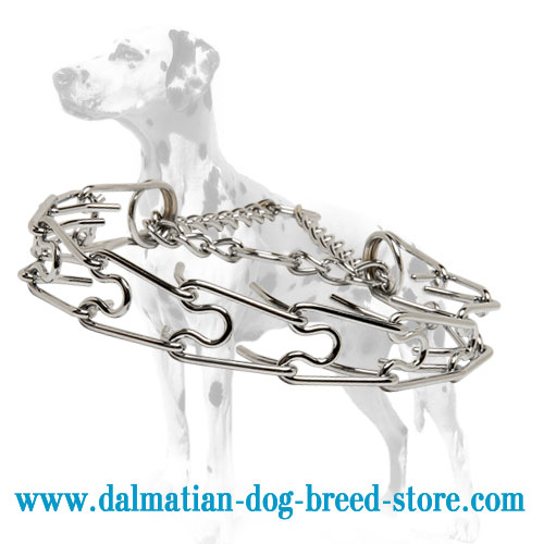 Dog pinch/prong collar for Dalmatians, chrome plated steel