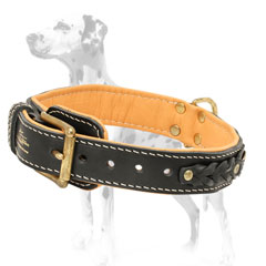 Original leather dog collar of the highest quality for Dalmatians