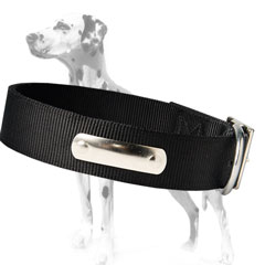 Awesome Nylon plied dog collar for Dalmatians