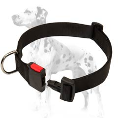 Dalmatian strong nylon dog collar with quick release buckle