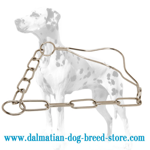 Dalmatian dog fur saver chain collar, chrome plated steel