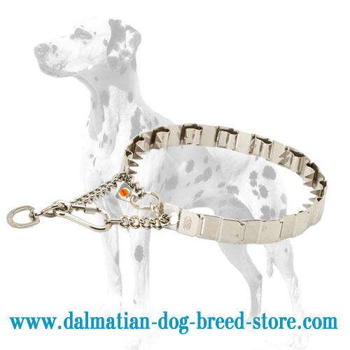 Dog neck tech prong collar for Dalmatians, 24 inches long