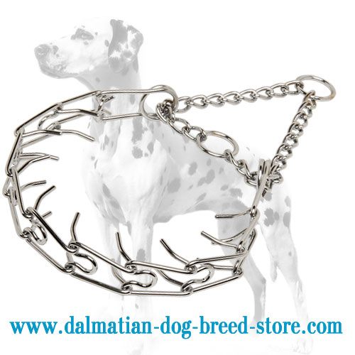 Dog prong collar of top quality