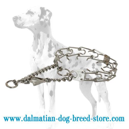 Dog prong collar for Dalmatians, swivel snap hook