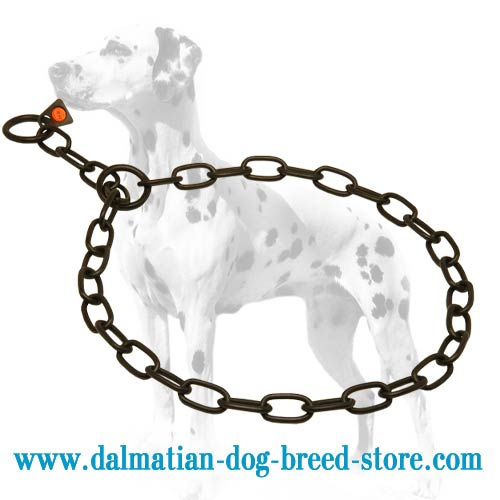 Dog fur saver for Dalmatians, exclusive black