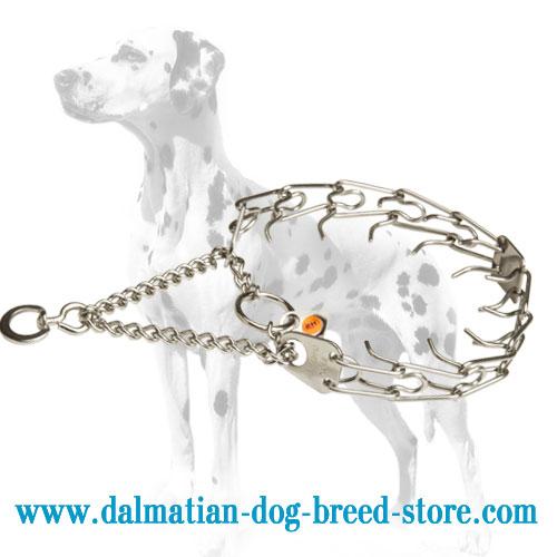 Dog prong collar for Dalmatians