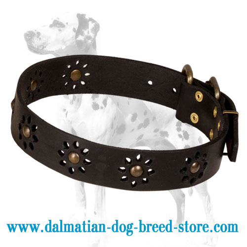Leather dog collar, rustproof studs